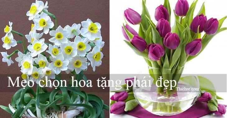 Mẹo chọn hoa tặng phái đẹp